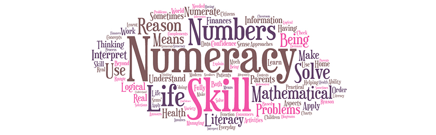 Image result for curriculum as numeracy